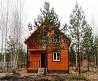 Деревянный дом в сосновом лесу, рядом с рекой Вексой