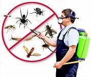 Товары для борьбы с насекомыми и грызунами.